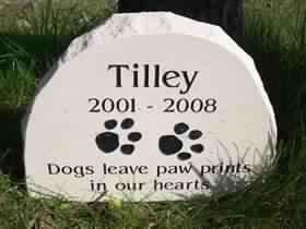 A4 Portland Stone with Beguit font and Paw Print design.